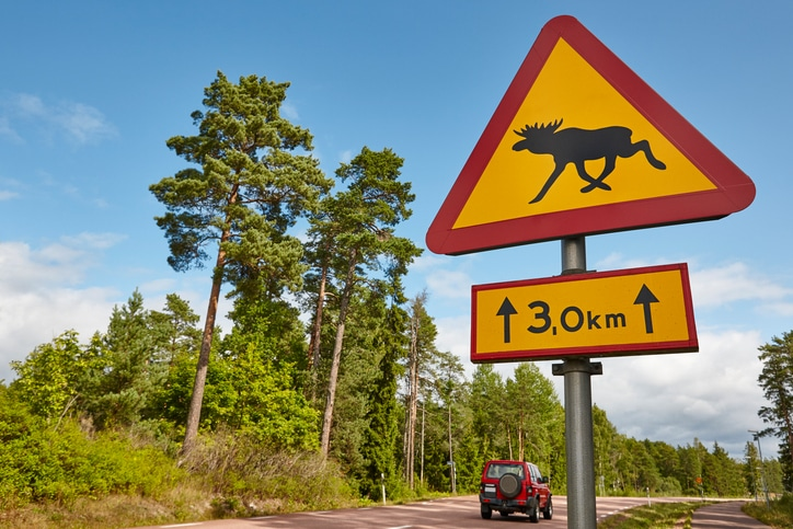 Elk moose traffic road signal on a finnish landscape.